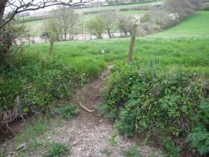 Provide stile at existing right-bank entrance point to Bramble Pool