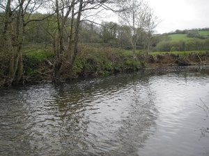 Repair of eroded bank and replacement of wire fence on left bank of Bramble Pool
